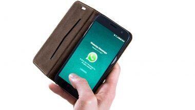 WhatsApp Pay म्हणजे काय? या नव्या फिचरचा वापर करुन पैशांची देवाण-घेवाण कशी कराल? जाणून घ्या