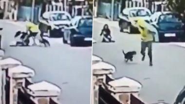Street Dog Viral Video: चोराने हिसकावली महिलेची पर्स; स्ट्रीट डॉगने चोराला शिकवला 'असा' धडा; पहा व्हायरल व्हिडिओ