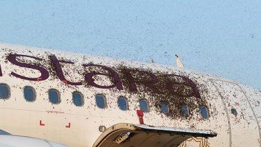 काय सांगता? Vistara च्या विमानावर मधमाशांचा हल्ला; अग्निशमन दलाने पाण्याचा फवारा मारून हटवले (Watch Video)