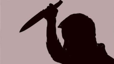 Spain: धक्कादायक! नरभक्षक मुलाने आईचा केला खून; नंतर तिच्या शरीराचे 1000 तुकडे करून कुत्र्यासोबत खाल्ले