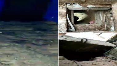 जम्मू-काश्मीर: दहशतवाद्यांच्या लपण्याच्या जागेवरून CRPF जवानांनी जप्त केल्या AK-47 च्या 26 गोळ्या आणि एका दहशवाद्याला केली अटक