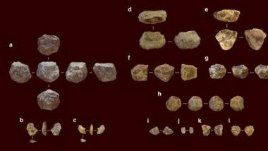 Oldest Stone Tool: टांझानियामध्ये सापडली मानवांनी तयार केलेली सर्वात प्राचीन दगडी शस्त्रे; 26 लाख वर्षांपूर्वी झाली होती निर्मिती