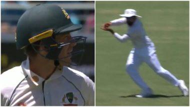 IND vs AUS 4th Test 2021: रोहित शर्मा नॉन-स्टॉप! गब्बा टेस्टमध्ये दुसऱ्या दिवशीजबरदस्त कॅच पकडत टिम पेनला धाडलंमाघारी (Watch Video)