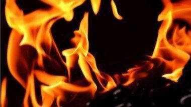 Sanitizer Blast in Kolhapur: कोल्हापूरमध्ये कचरा जाळताना सॅनिटायझरच्या बाटलीचा स्फोट; महिलेचा होरपळून मृत्यू