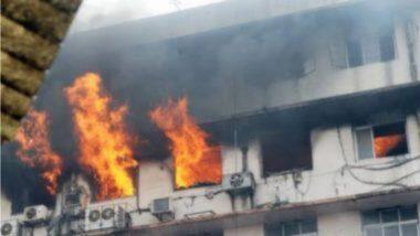 Bhandara Hospital Fire: तीन मृत मुलांनंतर जन्माला आली होती गोंडस चिमुकली; भंडारा रुग्णालयात लागलेल्या आगीत दाम्पत्याने तिलाही गमावलं