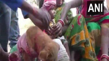 Odisha: अंधश्रद्धेचा कळस! ओडिशामध्ये गावकऱ्यांच्या उपस्थितीमध्ये कुत्रीशी लावले दोन मुलांचे लग्न; समोर आले धक्कादायक कारण