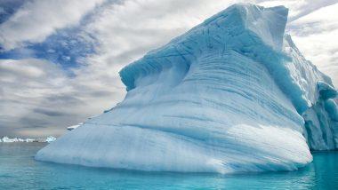 Life in Antarctica! निसर्गाचा चमत्कार; ब्रिटीश शास्त्रज्ञांना अंटार्क्टिकामध्ये पाण्याखाली 3000 फुटांवर अपघाताने सापडले जीव, Watch Video