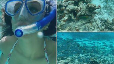 Alia Bhatt आणि Hina Khan नंतर Shraddha Kapoor दिसली Underwater; शेअर केला समुद्राच्या आतील जीवनाचा खास व्हिडिओ