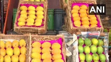 Alphonso Mangoes in Pun:  हापूस आंबा पुण्यात दाखल, मागणी, किंमत दोन्ही छान