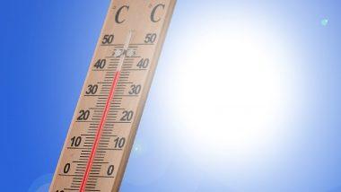 Weather in Maharashtra: महाराष्ट्रात तापमान वाढले, विदर्भात काही भागात उष्णतेची लाट