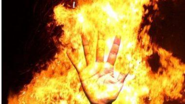 Pune Shivaji Market Fire: पुणे कॅम्प भागातील शिवाजी मार्केटमध्ये भीषण आग; मटण आणि चिकनची 25 दुकाने जळून खाक, 40 लाखांचं नुकसान