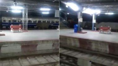 अचानक रेल्वे ट्रॅकवर दाखल झालेल्या हत्तीची सैर कॅमेऱ्यात कैद (Watch Viral Video)