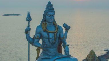 Mahashivratri 2021 Do's and Don'ts: महशिवरात्रीच्या दिवशी कोणत्या कोणत्या गोष्टी करू नयेत आणि गोष्टी कराव्यात? जाणून घ्या कशी साजरा कराल महाशिवरात्री