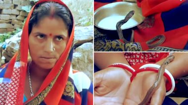 Woman Gave Birth to Snakes? बिहारमधील महिलेने केला 3 सापांना जन्म दिल्याचा दावा; विषारी सापांचा करते मुलासारखा सांभाळ