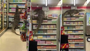 6 फूटी Monitor Lizard जेव्हा Thailand च्या 7-Eleven स्टोअर मध्ये  वस्तूंवरून झपझप चढते; सोशल मीडीयात झपाट्याने वायरल होतोय हा स्तब्ध करणारा व्हिडीओ (watch Video)