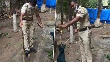 Mumbai Police Rescues Snake: सापाला लीलया रेस्क्यू करणाऱ्या मुंबई पोलिसाची अनोखी कामगिरी; पहा Video