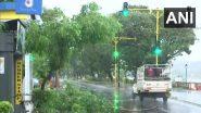 Cyclone Tauktae: उल्हासनगर येथे धावत्या रिक्षावर झाड उन्मळून पडले; एका प्रवाशाचा मृत्यू, रिक्षा चालकासह 2 जण जखमी