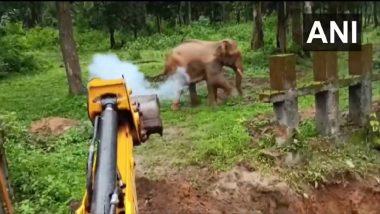 Karnataka: कर्नाटकमधील जंगलात वनविभागाने हत्तीला खड्ड्यात पडण्यापासून वाचवले (पाहा व्हिडिओ)