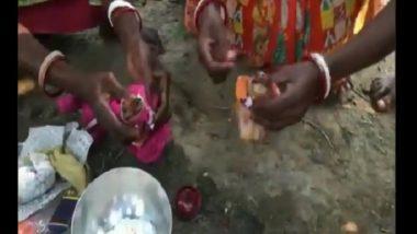 Frogs Marriage in Tripura: बेडूक नवरा, बेडकीन बायको; त्रिपुरामध्ये बेडकांचे लग्न (Watch Video)