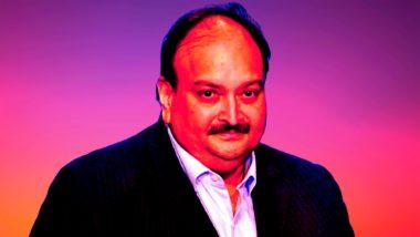 Mehul Choksi PNB Scam: पीएनबी घोटाळा प्रकरणातील आरोपी मेहुल चोकसी याला भारतात खरोखरच आणता येईल?