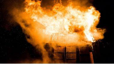 Gujarat Hospital Fire: भावनगरमधील जनरेशन हॉस्पिटलमध्ये भीषण आग, ICU मध्ये 70 रुग्णांवर सुरू होते उपचार