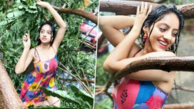Cyclone Tauktae मध्ये कोसळलेल्या झाडामध्ये टिव्ही अभिनेत्री Deepika Singh ने केला जबरदस्त डान्स; पहा Photos आणि Videos