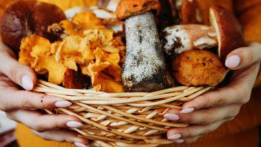 Mucormycosis Myths and Facts: स्वयंपाक घरात कांदे, फ्रीज मधील बुरशी ते कच्ची फळं खाणं यावर खरंच जीवघेण्या Black Fungus आजाराचा धोका अवलंबून आहे का?
