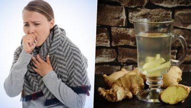 उन्हाळ्याच्या ऋतूमध्ये जर सर्दी-खोकला झाला तर घरातील 'हे' सोपे उपाय पटकन देतील आराम