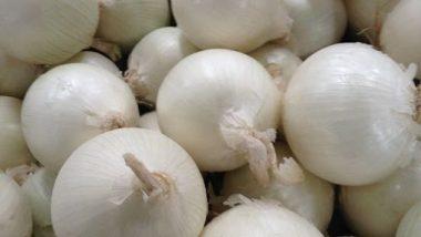 White Onion Health Benefit: फक्त रोगप्रतिकार शक्तिचनाही तर केसगळती ही थांबते, पांढऱ्या कांद्याचे सेवन केल्याने होतात 'हे' आरोग्यदायी फायदे