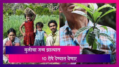 शेतकरी कुटुंबात यंदा मुलीचा जन्म झाल्यास सामाजिक वनीकरण विभाग 10 रोपे देणार