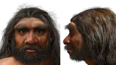 Dragon Man: संशोधकांना सापडली 1.46 लाख वर्षांपूर्वीची मानवी कवटी; समोर आली मानवाची नवी प्रजाती