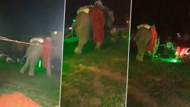Uttar Pradesh: उत्तर प्रदेशात लग्न समारंभात हत्तीची एन्ट्री, जीव वाचवण्यासाठी वधूवरांची पळापळ (Watch Video)