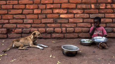 Severely Acute Malnourished: भारतामधील 9.2 लाखाहून अधिक मुले तीव्र कुपोषित; उत्तर प्रदेश व बिहारमध्ये सर्वाधिक कुपोषण, जाणून घ्या महाराष्ट्राची स्थिती