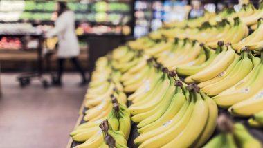 जळगावच्या केळ्यांची दुबई वारी
