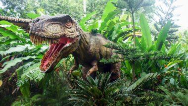 UK: ब्रिटनमध्ये सापडले 110 दशलक्ष वर्षांपूर्वीच्या Dinosaurs च्या सहा प्रजातींच्या पायांचे ठसे; 80 सेमी रूंद व 65 सेमी लांब