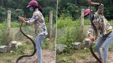 Viral Video: महिलेने उघड्या हाताने पकडला भयंकर मोठा साप; जरा संभाळूनचपाहा हा व्हिडिओ