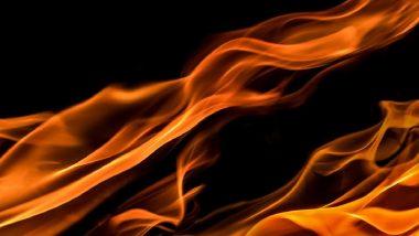 Greek Wildfires: ग्रीकच्या पाइन जंगलात भीषण आग, आपत्कालीन मदतीसाठी युरोपियन देशांना केले आवाहन