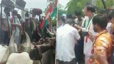 मुंबई मध्ये वाढत्या इंधनदराविरूद्ध बैलगाडीवर आंदोलन करताना कॉंग्रेस कार्यकर्ते मंचासह कोसळले (Watch Video)