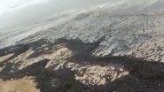 Mumbai: तेलगळतीमुळे जुहू बीचवर जमा झाली काळी वाळू; स्वच्छता प्रक्रीयेला सुरुवात (Watch Video)
