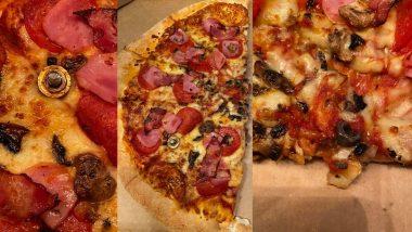 Domino's मधून पिझ्झा ऑर्डर करणे पडले महागात; चिकनसोबत आढळले चक्क लोखंडी खिळे, नट आणि बोल्ट (See Photos)