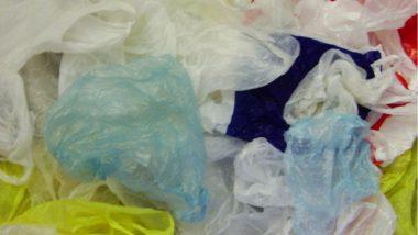 Ban on Single Use Plastic Items: देशात एकेरी वापरातील प्लास्टिक वस्तूंवर 1 जुलै 2022 पासून बंदी