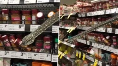 Sydney: सुपरमार्केटमध्ये मसाले शोधत असताना अचानक समोर आला 3 मीटर लांबीचा Python, वाचा पुढे नेमके काय घडले