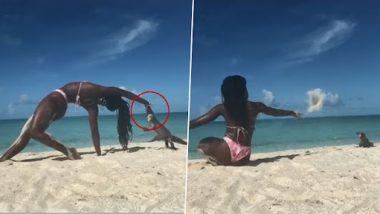 Bikini Yoga Video: समुद्र किनारी योगा करणाऱ्या महिलेचा विशाल घोरपडीने घेतला चावा, रक्तबंबाळ झाल्याचा व्हिडिओ व्हायरल  ( Watch Video)