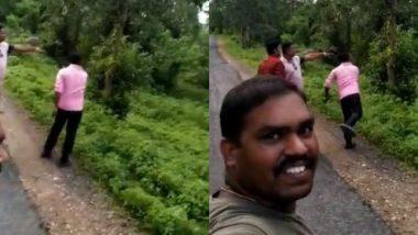 झाडावरुन खाली उतरणाऱ्या बिबट्यावर लोकांची विनाकारण दगडफेक, सोशल मीडियात युजर्सकडून संताप व्यक्त (Watch Viral Video)