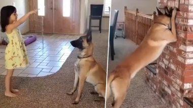 चिमुकलीचा पाळीव कुत्र्यासोबत रंगला लपाछुपीचा खेळ; पहा Viral Video