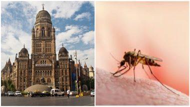 Epidemic in Mumbai: मुंबई शहरात साथीचे आजार बळावले,  मलेरिया, लेप्टोस्पायरोसिस, डेंग्यू, कावीळ, स्वाइन फ्लू रुग्णांमध्ये पुन्हा वाढ