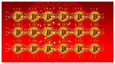 Cryptocurrency Blockchain Nodes: क्रिप्टोकरन्सी ब्लॉकचेन नोड कसे काम करते? जाणून घ्या नेटवर्कविषयी