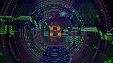 Cryptocurrency Bitcoin: बिटकॉईन गुंतवणूक वादातून 32 वर्षीय तरुणाची हत्या, तीन आरोपींना अटक; वाशीम येथील घटना