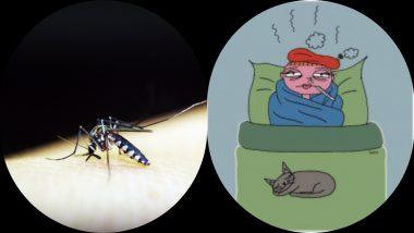 Epidemic in Mumbai: मुंबई शहरात वाढले साथीचे आजार; डेंग्यू, हिवतापाने मुंबईकर त्रस्त