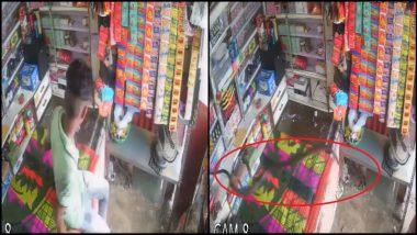 Snake Viral Video: उंदीर पकडण्याच्या नादात दुकानदाराच्या अंगावर पडला साप, पाहा व्हिडिओ